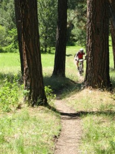 Biker on an Biking Trail from Owsley Canyon